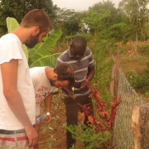 Permaculture Workaway Kenya